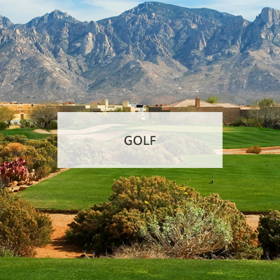 Grogan & Grogan Tucson Real Estate