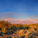 Search all Tucson Luxury Homes for Sale