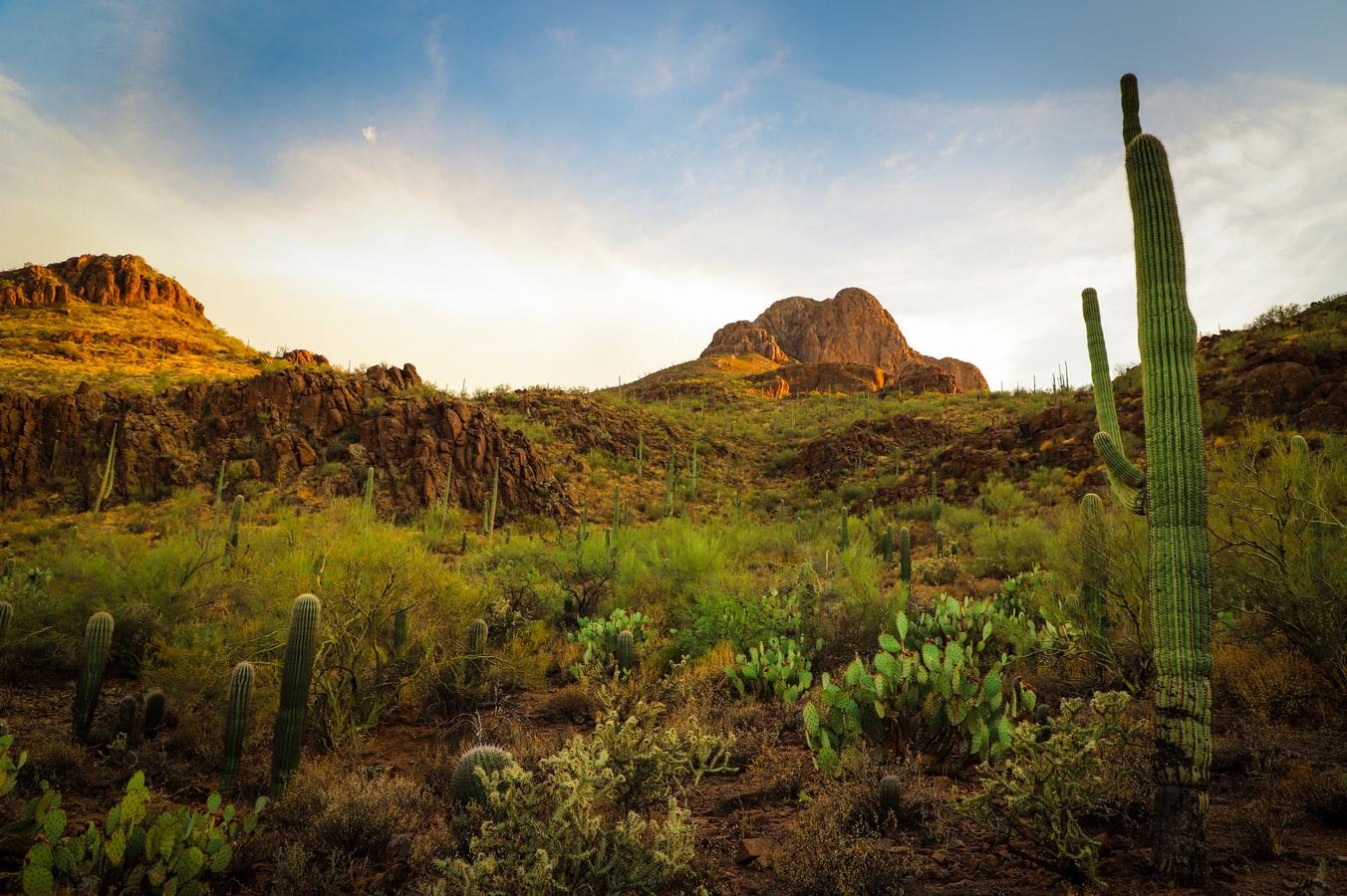 Scenic Tucson
